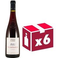 Domaine des Damoiselles Saumur Champigny Maine et Loire 2016 - Vin rouge
