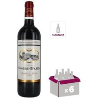 Magnum Château Chasse Spleen 2014 Moulis - Vin Rouge