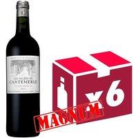 Les Allées de Cantemerle 2013 MAGNUM - Haut Médoc - Grand Vin  de Bordeaux