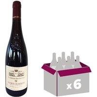 La Grande des Elettes Saumur Champigny 2015 - Vin rouge