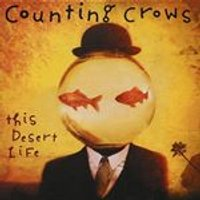 Counting Crows - This Desert Life (Music CD)