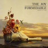 Joy Formidable (The) - Wolfs Law (Music CD)