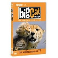 Big Cat Week - Series 3