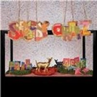 Speedy Ortiz - Foil Deer (Music CD)