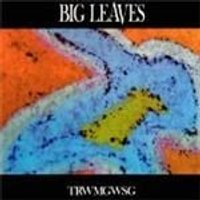 Big Leaves - Trwmgwsg (Music CD)