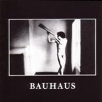 Bauhaus - In The Flat Field (Music CD)