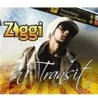 Ziggi - In Transit (Music CD)