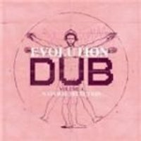 Joe Gibbs & The Professionals - Evolution Of Dub Vol.4, The (Natural Selection) (Music CD)