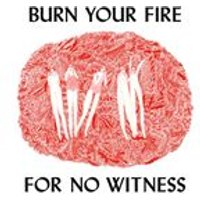 Angel Olsen - Burn Your Fire For No Witness (Music CD)
