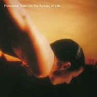 Porcupine Tree - On the Sunday of Life (Music CD)