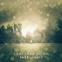 Last Leaf Down - Fake Lights (Music CD)