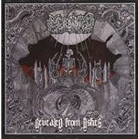 Morbidity - Revealed from Ashes (Music CD)