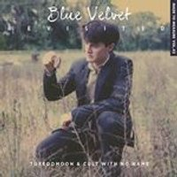 Cult with No Name - Blue Velvet Revisited (Music CD)