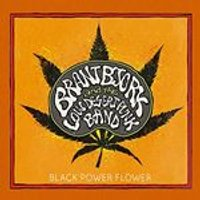 Brant Bjork - Black Power Flower (Music CD)