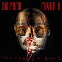 Form (Die) - Rayon X (Music CD)