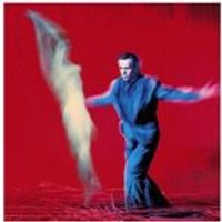 Peter Gabriel - Us (Music CD)