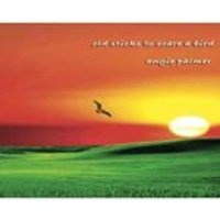Angie Palmer - Old Sticks To Scare a Bird (Music CD)