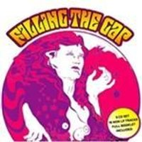 Various Artists - Filling the Gap, Vol. 1-5 (Music CD)