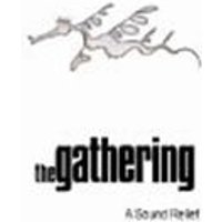 GATHERING-A SOUND RELIEF (DVD)