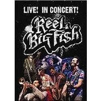 Reel Big Fish - Live In Concert