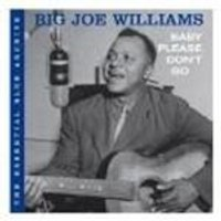 Big Joe Williams - Baby Please Dont Go (Music CD)