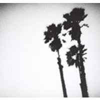 The Twilight Singers - Blackberry Belle (Music CD)