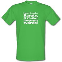 I know Kung Fu Karate & 37 other dangerous words! male t-shirt.