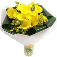 Summer Yellow Calla Lilies