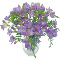 Lilac Charm Freesia Bouquet
