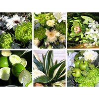 Green Flower Collection