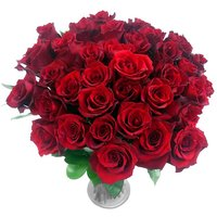 Obsession 36 Red Rose Bouquet