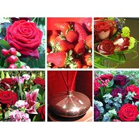 Red Flower Collection