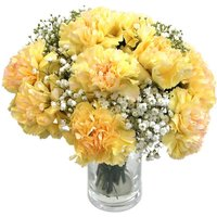 Yellow Carnations