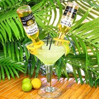 CoronaRita Bottle Holders & Grande Martini Glass (Set of 6) - Gadgets Gifts