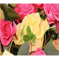 Luxury Roses Funeral Posy