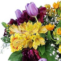 Peonies, Gerberas and Tulips in a Vase