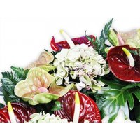 Anthurium Mix Wreath