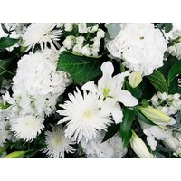 Front Facing White Elegance Flower Basket