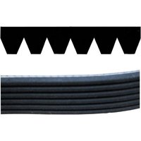 Auxillary Drive Poly V Belt 6pk915 Premium