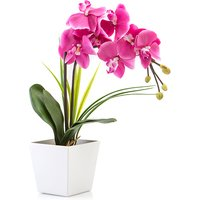 Phalaenopsis Orchid Potted Plant with 9 LED Lights 335552
