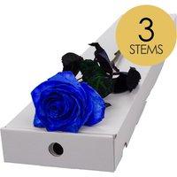 3 Classic Blue Roses