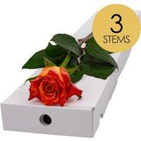3 Classic Orange Roses