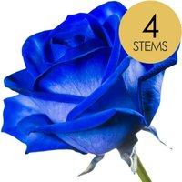 4 Classic Blue Roses