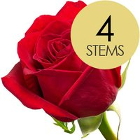 4 Classic Bright Red Freedom Roses