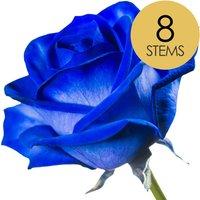 8 Luxury Blue Roses