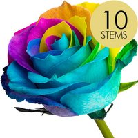 10 Luxury Happy Roses