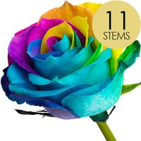 11 Classic Happy Roses