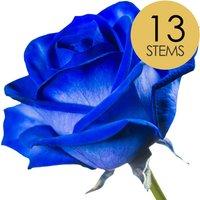 13 Classic Blue Roses
