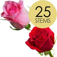 25 Red and Pink Roses