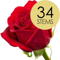 34 Classic Bright Red Freedom Roses